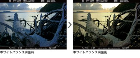 y_a77_finder_operation.jpg